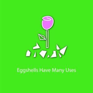 egg myth infographic - eggshells have many uses