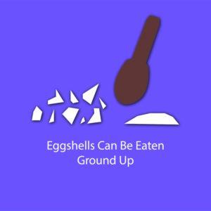 egg myth infographic - egg shells can be eaten