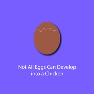 egg myth infographic - not all eggs develop into a chicken